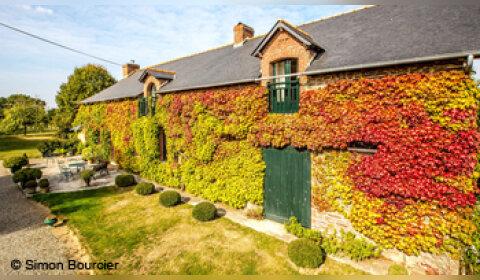 Solen, l'idée lumineuse pour l'immobilier