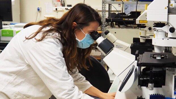 HRS4R : au-delà d'un label, une démarche de qualité pour les chercheurs