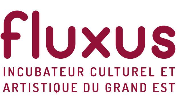 Appel à projets : l'incubateur Fluxus soutient des projets culturels dans le Grand Est