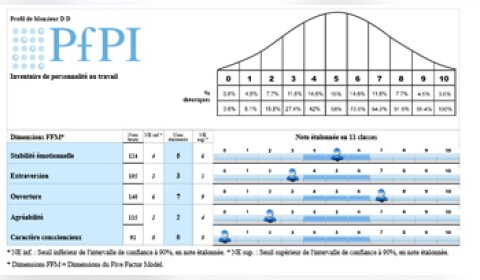 PfPi : le test qui évalue l'efficience professionnelle