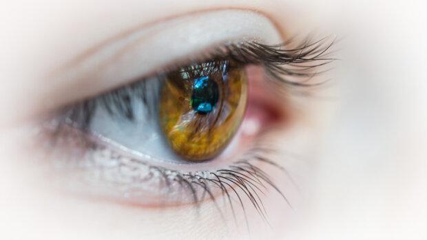 Ce que l'eye tracking apporte à la formation