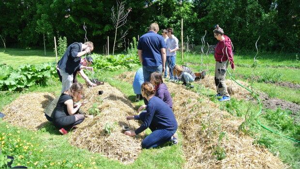 """Cultiver son jardin, avec le """"campus comestible"""" de l'Université de Lille"""