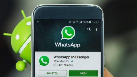 Cinq raisons d'utiliser WhatsApp dans votre agence - dr