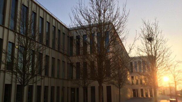 Insertion pro des docteurs de l'Université Paris Saclay: du travail et des responsabilités!
