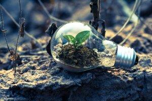 Sulitest fait partie du mouvement «Higher Education Sustainability Initiative» - © Pexels