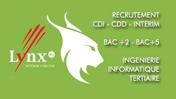 Lynx RH, le premier réseau de recrutement franchisé - D.R.