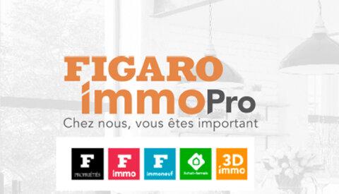 Figaro Immo Pro, la marque de tous les projets immobiliers -