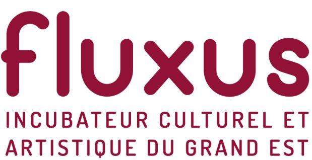 Appel à projets: l'incubateur Fluxus soutient des projets culturels dans le Grand Est