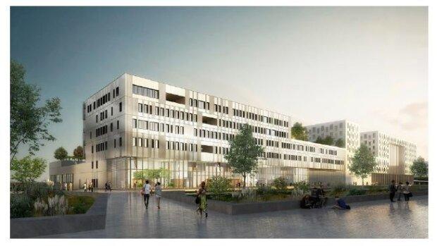 L'Université de Toulouse 3 recrute un directeur(-trice) administratif(-ve) de la faculté de médecine