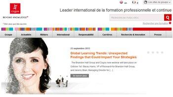 Enquête Cegos: le climat social s'améliore en France - D.R.