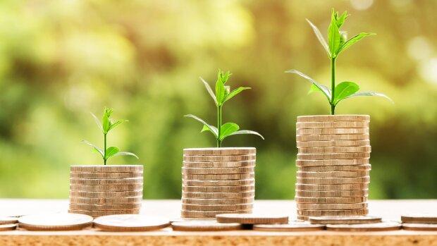 Campus Matin vous livre 10 conseils pour consolider sa campagne de fonds annuel. - © Pixabay/Nattanan Kanchanaprat