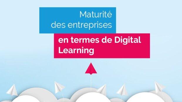 La maturité des entreprises en termes de Digital Learning - © D.R.