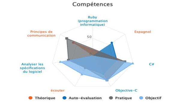 Visualiser les compétences de vos équipes avec SkillsBoard - © D.R.