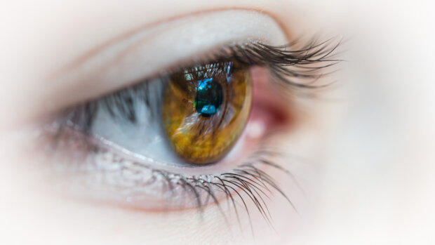 Ce que l'eye tracking apporte à la formation - © D.R.