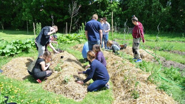 Cultiver son jardin, avec le «campus comestible» de l'Université de Lille