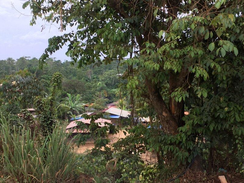 Squat dans la forêt amazonienne ici Saint-Laurent-du-Maroni