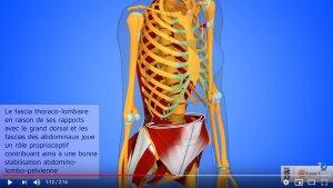 Site de la chaine 3D Anatomie