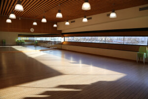 Salle des pratiques d'FGO.