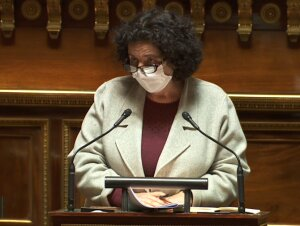 Frédérique Vidal au Sénat le 10/02/2021 - © D.R.