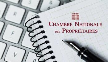 Loi Alur: la Chambre nationale des propriétaires monte au créneau - D.R.