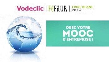 MOOC d'entreprise: le nouveau défi de la formation professionnelle - D.R.