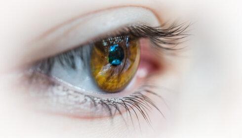 Ce que l'eye tracking apporte à la formation - D.R.