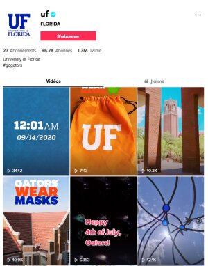 university of florida tik tok DR